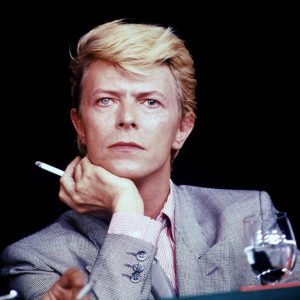 1358069623_153_bowie21